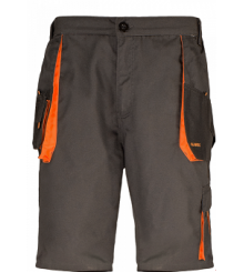 CLASSIC- Pantalon scurt