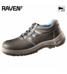 RAVEN LOW O1